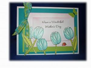 blue-tulips