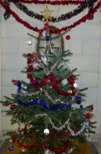Noel Tree at 8 rue Bremontier, Paris 75017