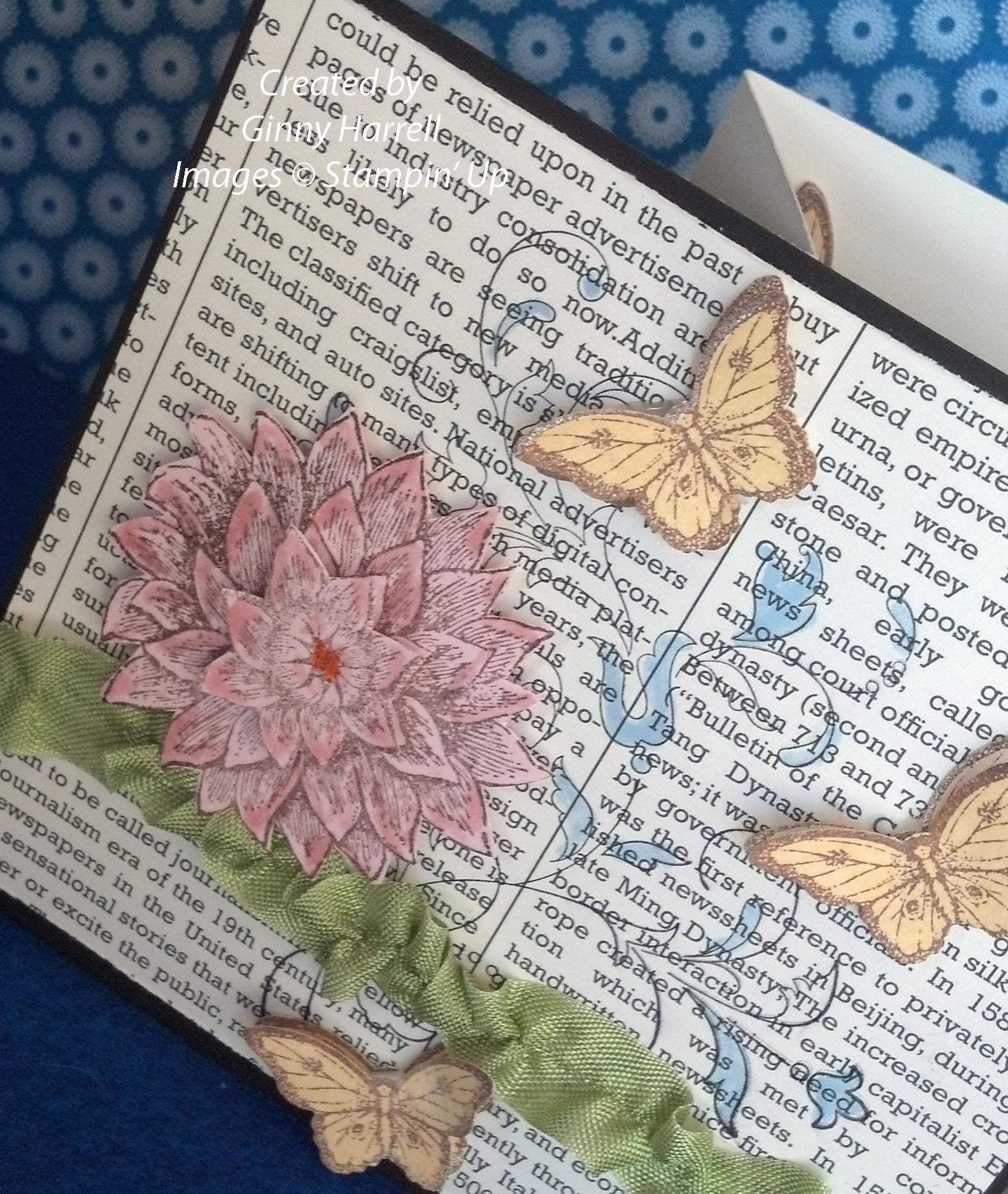 butterfly z2 copy