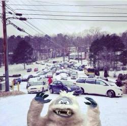 snow photbomb
